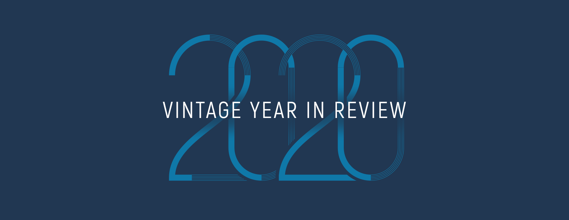 2020 Vintage Year in Review